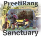 PreetiRang Sanctuary at Sevathon 2014